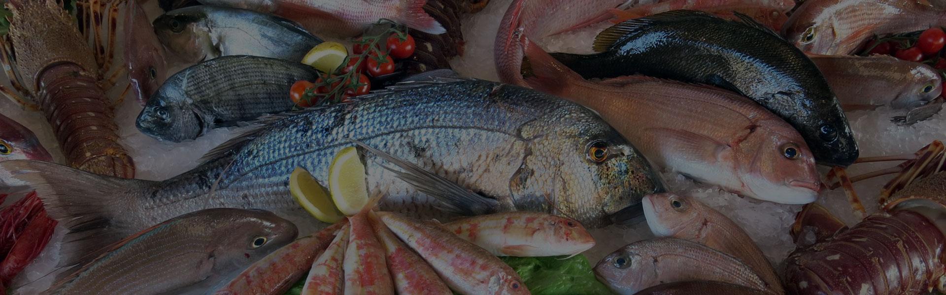 Tutto pesce zenandcook - Corsi di cucina genova ...