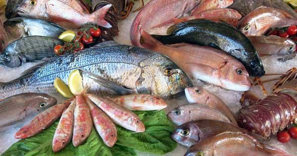 zenandcook-scuola-di-cucina-genova-corso-di-pesce
